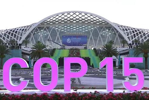 Adopta la COP15 la filosofía ecológica china para proteger la biodiversidad