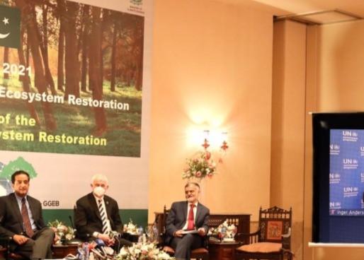 Día Mundial del Medio Ambiente: un llamado para restaurar los ecosistemas
