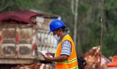Confirman la suspensión provisional de nuevas obras del Tren Maya en Yucatán