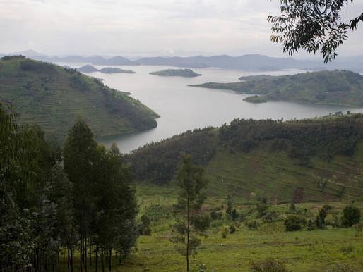 La restauración puede ayudar a evitar el 60% de las extinciones de la biodiversidad previstas: PNUMA