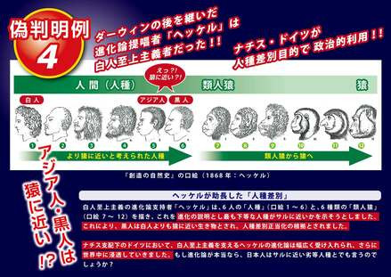 SC_TN_Disprove-of-Evolution-Theory-04.jp