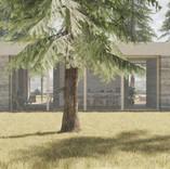 Design home Vals for moxVR tree