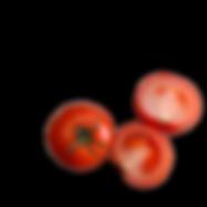 20200105_160616_0000-removebg-preview.pn