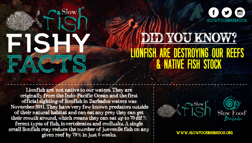 Lionfish and Reefs