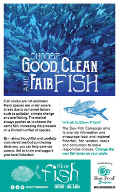 Good Clean and Fair Fish