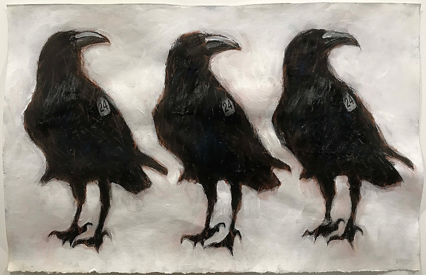 HENDERSON_THREE RAVENS, NUMBER 24_MIXED
