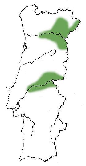 zimbro-galegomapa.jpg