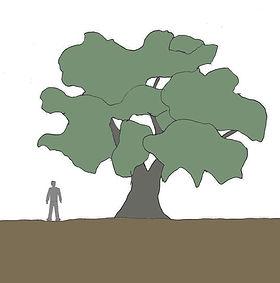 oliveiradesenho.jpg