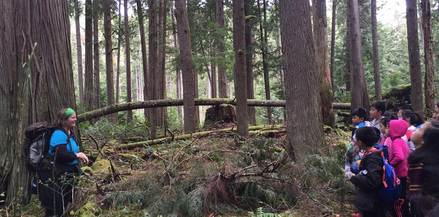 HikingAtOutdoorLearningCentre07.jpg
