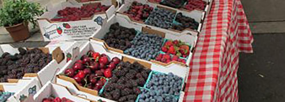 farmersmarketfruit.jpg