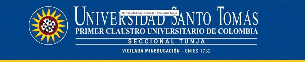 Univ Santo Tomas.jpg