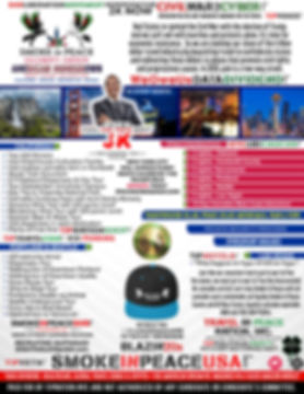 NEW FLYER SIP JFK (1).jpg