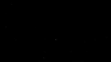 See NEw York logo black.png