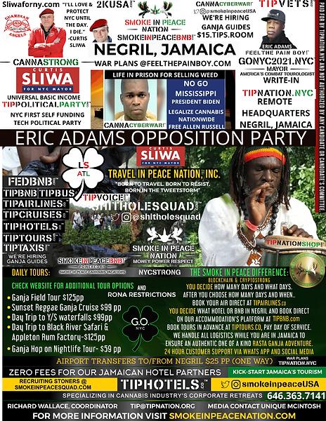 _ REMOTE $1115 JAMAICA  (1).png