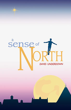 A Sense of North by David Underdown