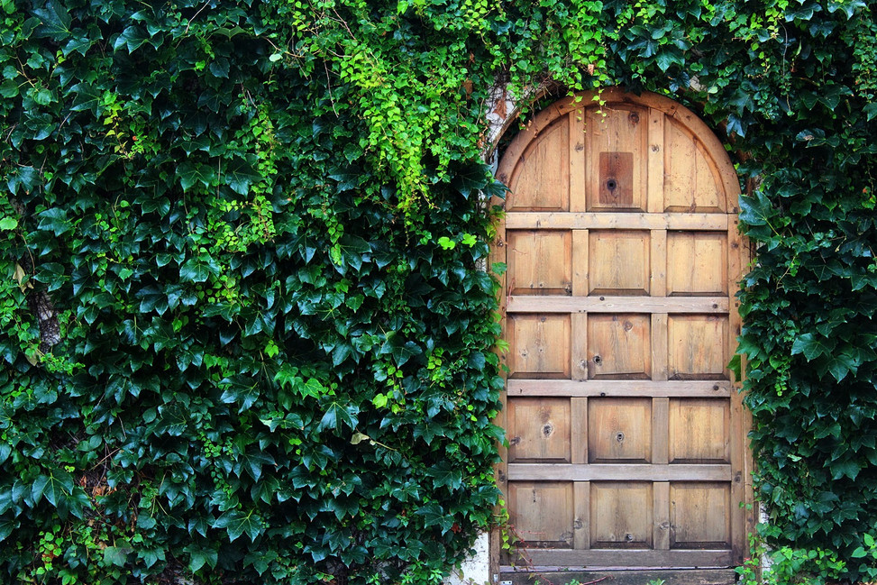 Narnia Door East Village.jpg