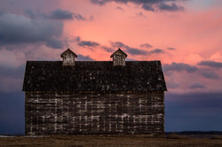 faded white barn pink sunset 1.5