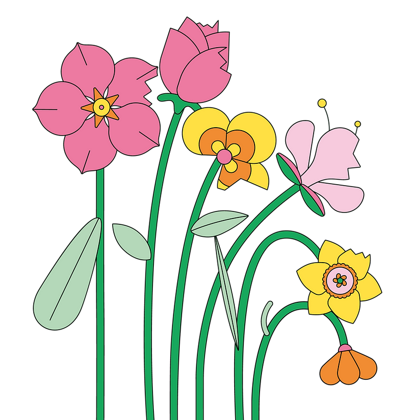Illustrations PNG-06.png