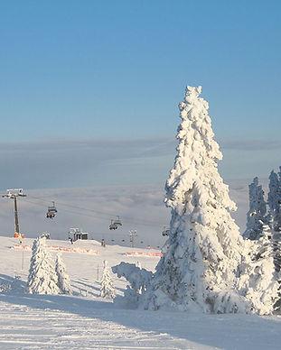 skischule_onsnow_feldberg__onsnow_BG_bil
