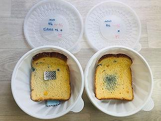 bread test 4.jpg