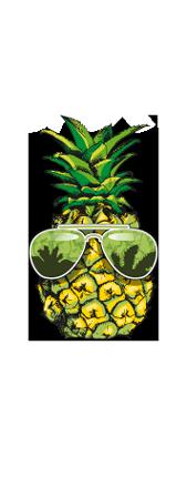 abacaxi+hortela-logo-guri.png