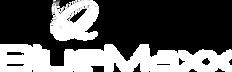 logo_Bluemaxx_FUNDO_PRETO_edited.png