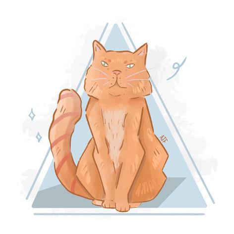 Borris The Cat