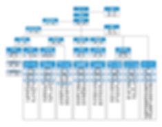 組織図-1.jpg