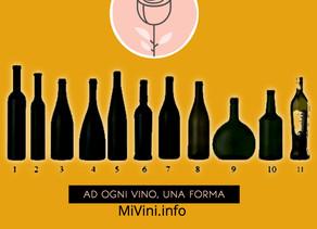 Tipologie di bottiglie: modelli più utilizzati