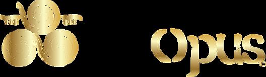 paxopus_logo.png