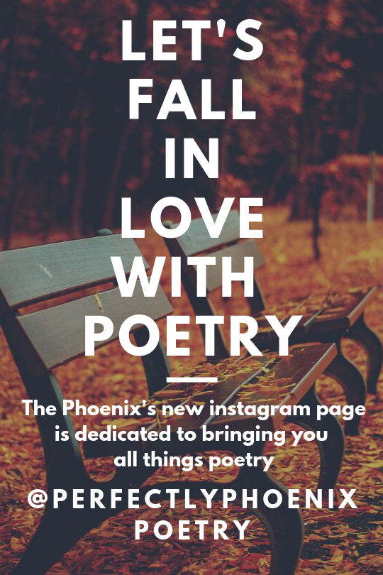 Follow Perfectly Phoenix on Instagram