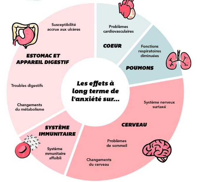 « Du point de vue holistique, le stress agit également comme un perturbateur. Celui-ci touche 70% de la population française, tout niveau social confondu ». (Carsalade, 2019)