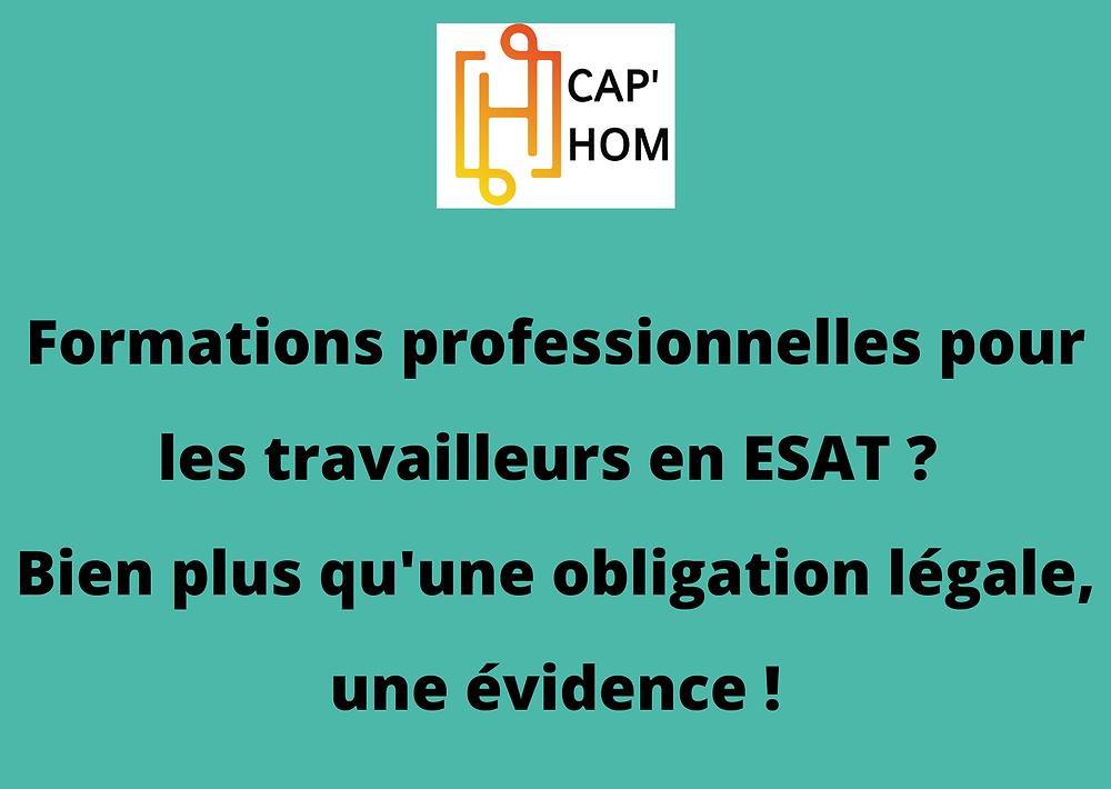 Formations professionnelles pour les travailleurs handicapés en ESAT ? Bien plus qu'une obligation légale, une évidence !