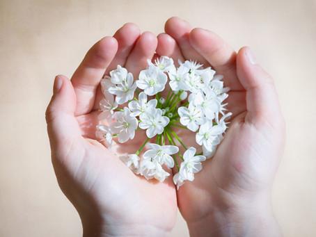 Naturopathie, la voie naturelle vers le bien-être