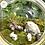 Thumbnail: โมเดลขอนไม้กับดอกไม้