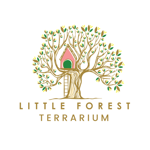 logo facebook  180815.png
