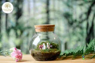 สวนขวด Little Forest terrarium (2).jpg