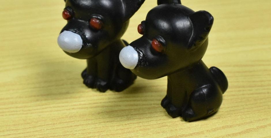 โมเดลน้องหมาสีดำ