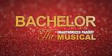 bachelor_roses-banner-5.png