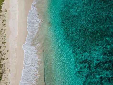 Neds Beach. Lord Howe Island, NSW.