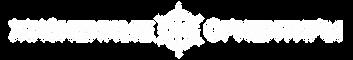 Логотип Жизненные ориентиры белый.png