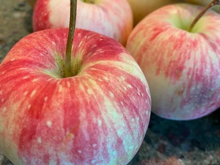 Taste the Market: Early Apples