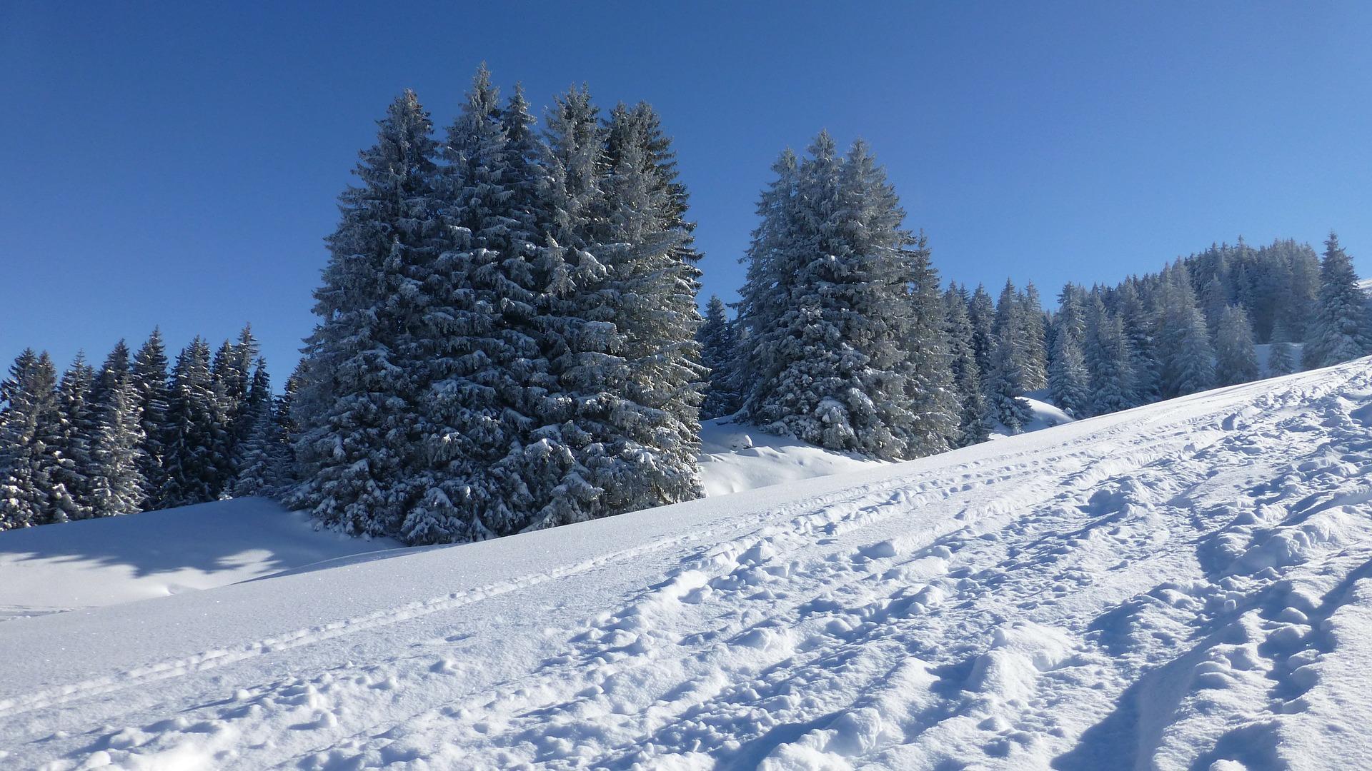 Winterwandern im Allgäu