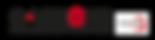 LOGO_e-visions_syn.png