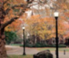 campus_edited.jpg