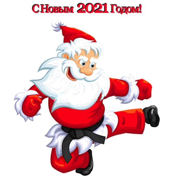 Итоги 2020 и поздравление с Новым Годом 2021!