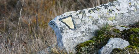 tacca sentiero roccerè