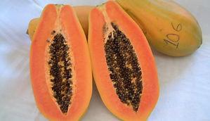 Mamão_fruto_aberto.JPG