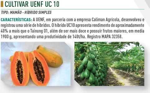 UC10.jpg