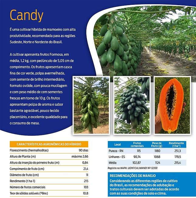 Candy_1.tif